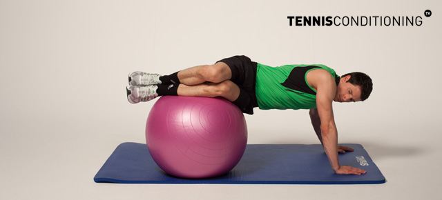 Physio Ball Trunk Rotations
