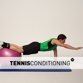 Physio Ball Push Up to Single Limb Raise