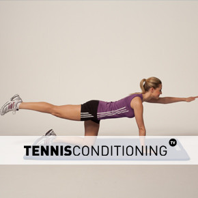 4 Point Prone Contra Lateral Limb Raises