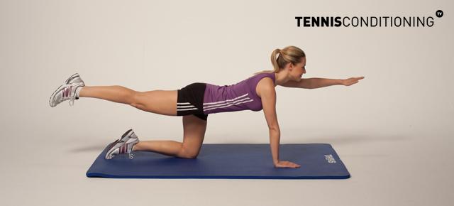 4 Point Prone Contra-Lateral Limb Raises